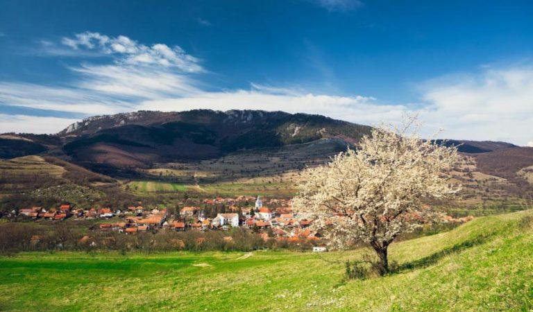 Primăvara în România. 16 de peisaje care îți taie răsuflarea