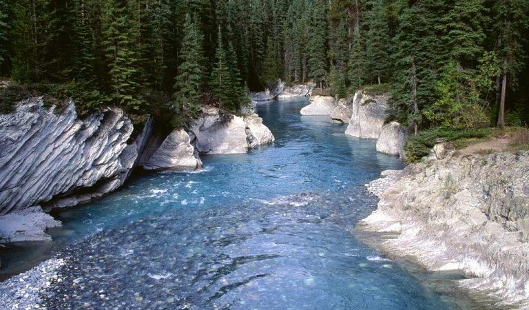 Există 7 izvoare în Bucegi care au cea mai pură apă de pe Planetă unde nu există nicio bacterie!