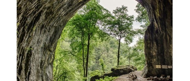Peştera Meziad din Bihor – mari săli subpământene de peste 30 de metri înălțime.